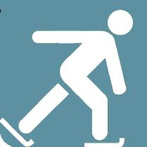 ski-Sebia-Icon